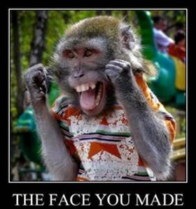 Porn Star Monkey Face